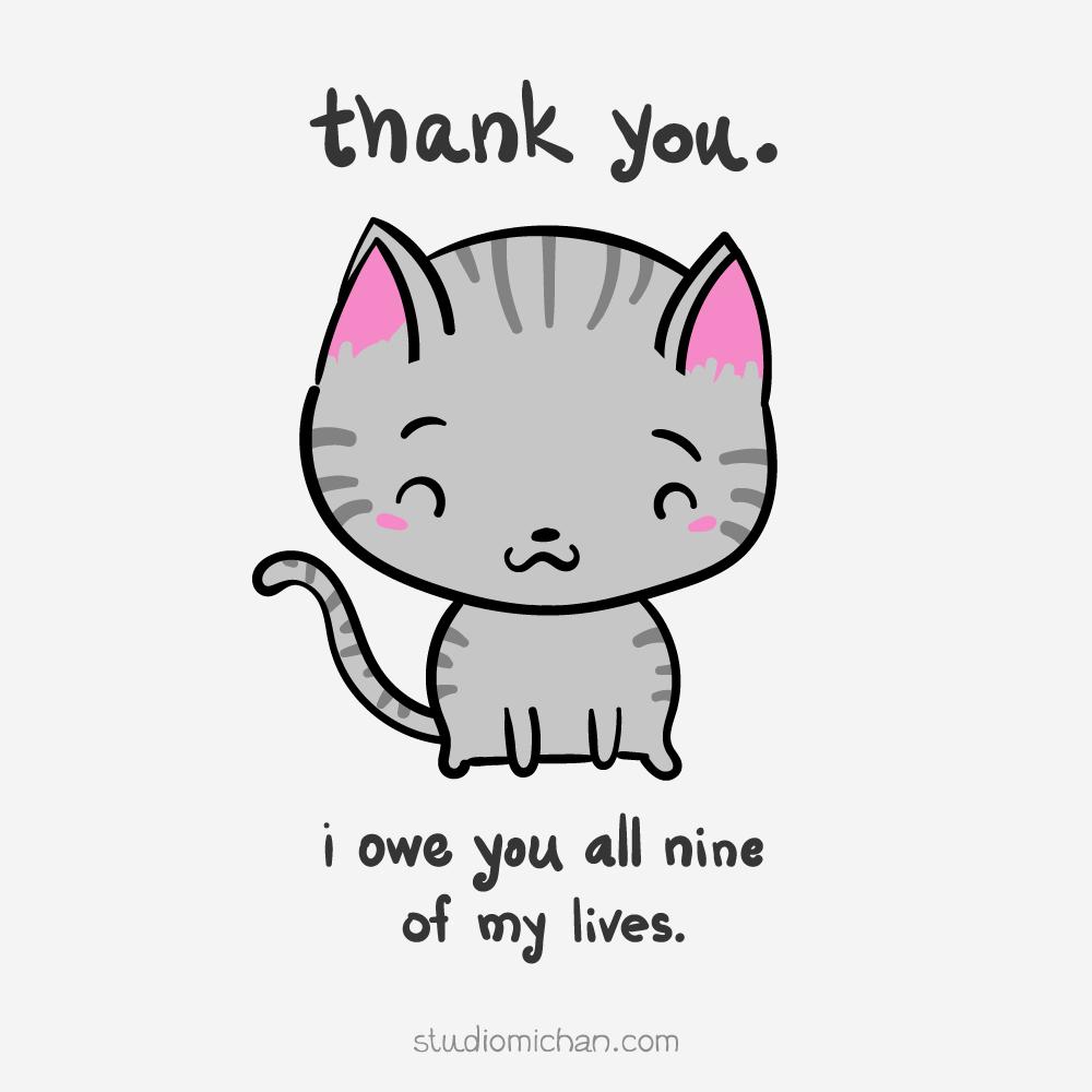 Gratitude Cat